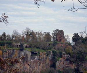 Visite guidate - Visita guidata al castello di Fogliano