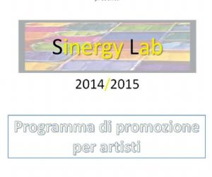 Gallerie - Sinergy Lab V edizione 2014/2015