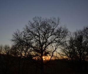 Visite guidate - Calcata. Notte di luna, di stelle e…