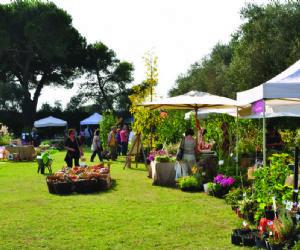 Attività - Giardini della Landriana