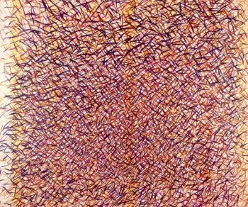 In mostra circa settanta opere, tra le più rappresentative, della lunga attività dell'artista