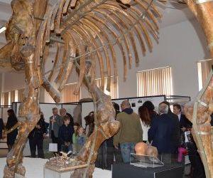 Per tutti i sabato del mese la città universitaria e i suoi musei saranno meta di attività culturali