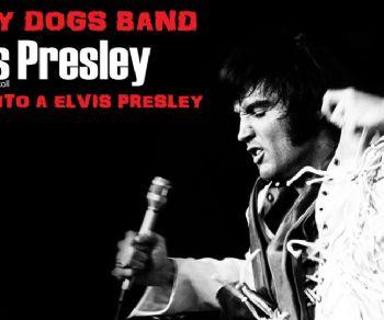 Concerto Tributo a Elvis Presley