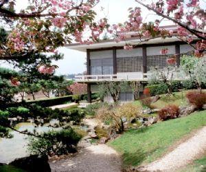 Attività - Apertura straordinaria dell'edificio e del giardino dell'Istituto giapponese