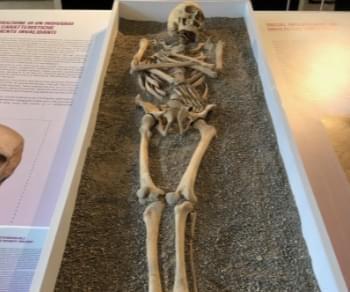 Mostre - Storie di vita – Gli antichi romani raccontati dalla scienza