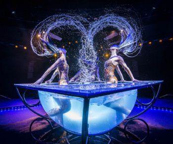 Spettacoli - Aqua Circo