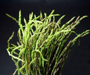 Sagre e degustazioni: Sagra degli asparagi selvatici e degli arrosticini