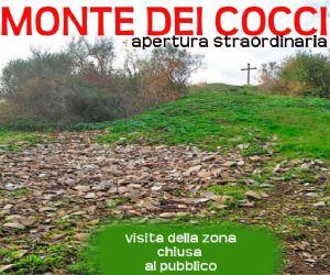 Visite guidate: Il Monte dei Cocci: Monte Testaccio