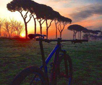 Visite guidate - Pedalando lungo la Via Appia