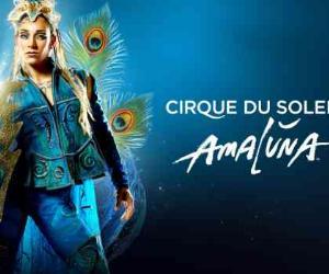 Spettacoli: Amaluna