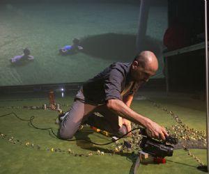 Spettacoli - Agrupación Señor Serrano - Birdie