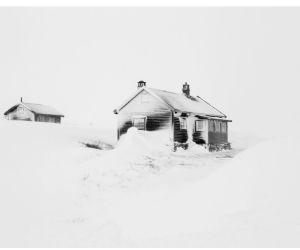 Gallerie - Frederik Buyckx