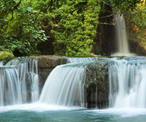 Corso di fotografia naturalistica nel Parco Valle del Treja