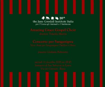 Concerti - Amazing Grace Gospel Choir