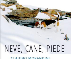 Claudio Morandini a Libri a Mollo
