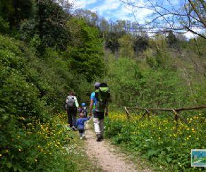 Percorso ad anello alla scoperta del Parco del Treja