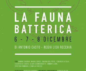 Spettacoli - La Fauna Batterica