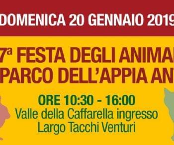 Attività - 17^ Festa degli Animali Domestici e da Cortile