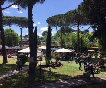 Festival - Egeria Summer Festival