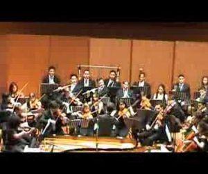 """Si esibirà l'Orchestra Sinfonica del Lido di Roma """"Ostia Chamber Orchestra"""""""