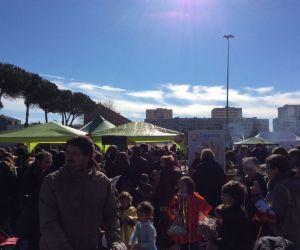 Rassegne: Vigne Nuove in Festa