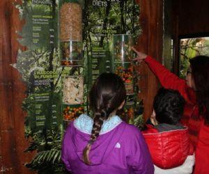 Bambini e famiglie: Incontri di natura al Bioparco