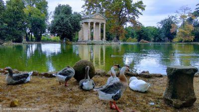Visite guidate - Parco di Villa Borghese