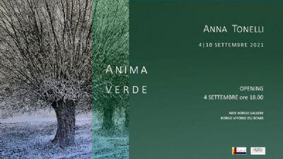 Gallerie - Anima verde