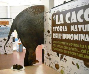 Mostre: La cacca: storia naturale dell'innominabile