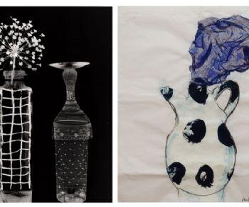 Gallerie - Isabella Ducrot | Claire de Virieu