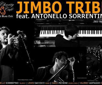 Gallerie: Jimbo Tribe feat