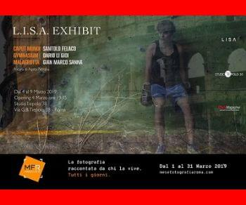 Gallerie - L.I.S.A. EXHIBIT