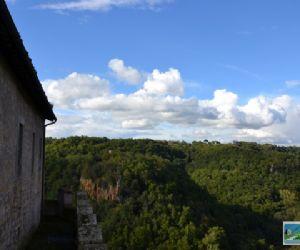 Visite guidate: Il Parco del Treja aderisce alla Settimana Europea dei Parchi