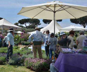"""Altri eventi - Torna il flower show """"Primavera alla Landriana"""""""