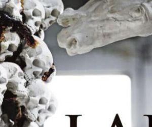 Un intervento monumentale di scultura contemporanea, ideato dall'artista messicano Gustavo Aceves