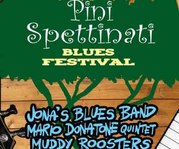 Concerti - Pinispettinati Blues Festival