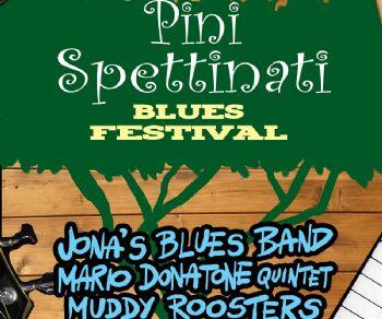 Concerti - Pinispettinati Blues Festival