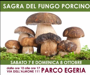 Sagre e degustazioni - Sagra del Fungo Porcino