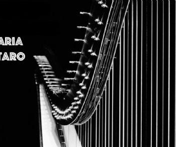 Concerti: Pomeriggi musicali