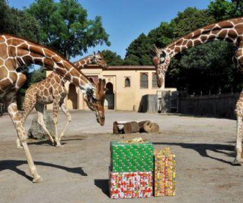 Gli eventi dedicati ai bambini previsti per le festività