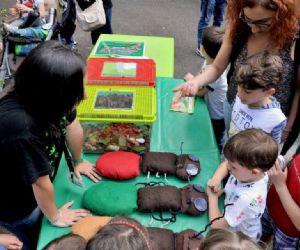 Bambini e famiglie: Millepiedi, Insetti & Co.