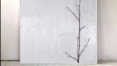 Gallerie - Naturalia di Anna Corcione