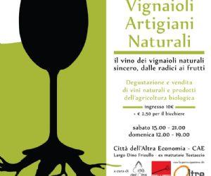 Il vino dei vignaioli naturali sincero, dalle radici ai frutti