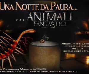 Altri eventi: Speciale Carnevale al museo di zoologia