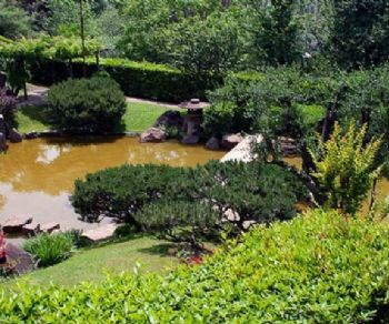 Visite guidate - Tutta l'Arte è imitazione della Natura: l'Orto Botanico di Roma