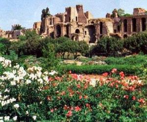 Visite guidate: Il Palatino laddove bellezza, ferocia, architettura e natura s'incontrarono per scrivere la storia di Roma