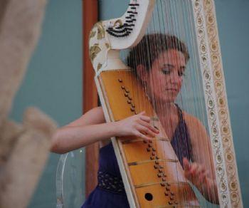 Concerti - Dal violino all'arpa barocca