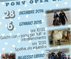 Fiere: Christmas Pony Open Day