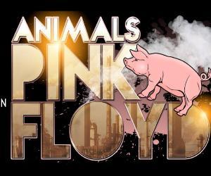 Concerti: Animals