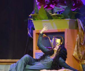 Spettacoli: Rapunzel